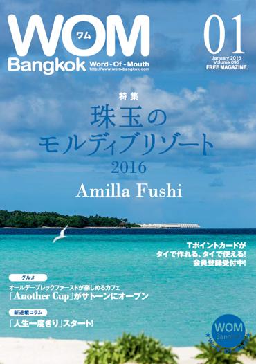 VOL.95 珠玉のモルディブリゾート 2016 Amilla Fushi