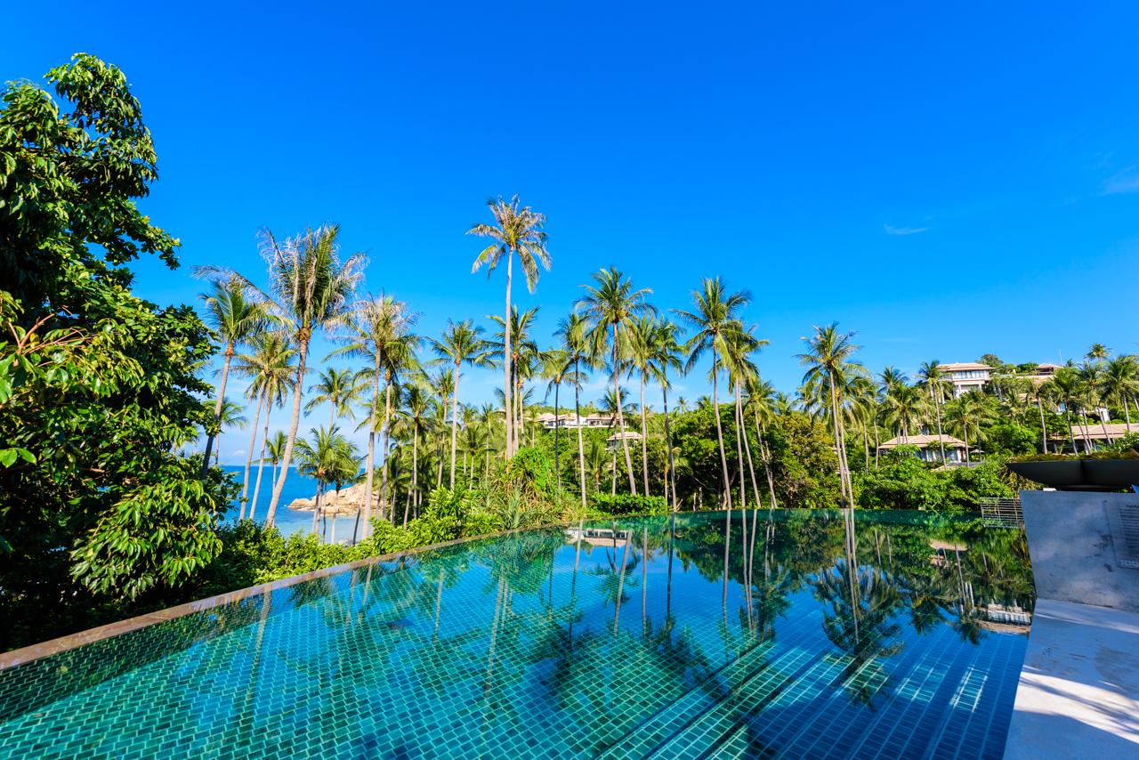 パブリックプールに映るココナツの木の影が印象的。サムイ島は別名「ココナツアイランド」と呼ばれるほどココ椰子の木が多く、椰子の木の高さよりも高い建物を建ててはいけない条例がある