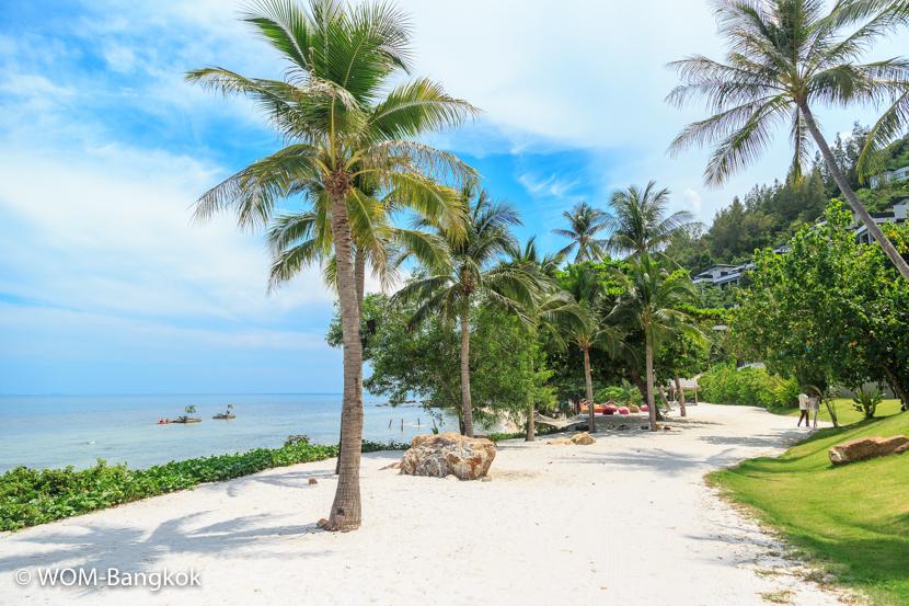 ビーチ沿いの散歩道はジョギングに最適
