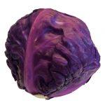 第69回 紫キャベツ