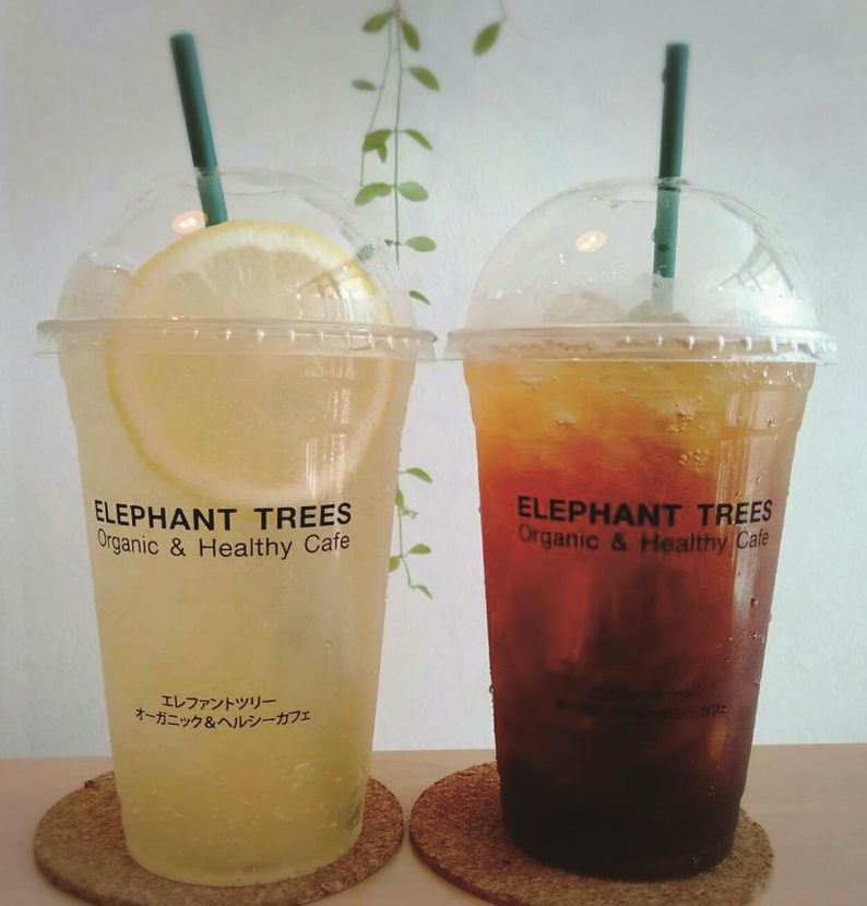 ELEPHANT TREES Organic & Healthy Cafe